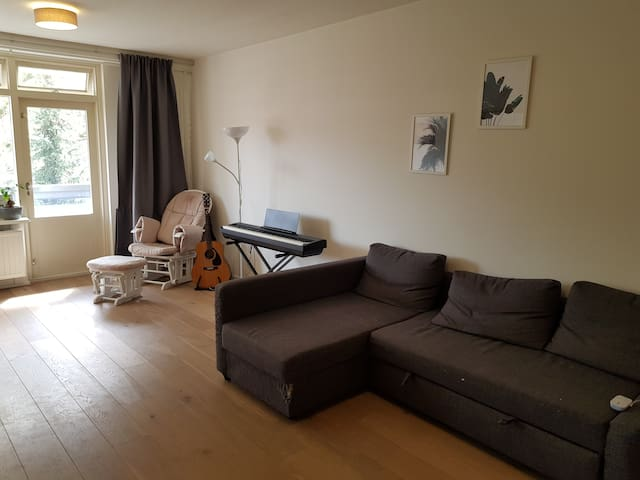 2 Bedroom apartment in Amsterdam Zuid (with Cats)