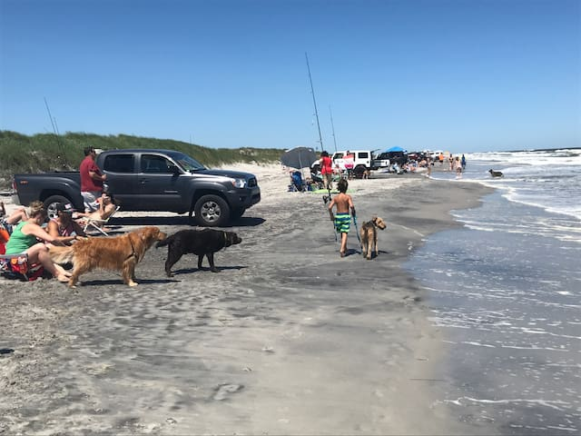 Dog beach at north end of the island