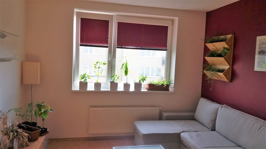 Furnished flat to let