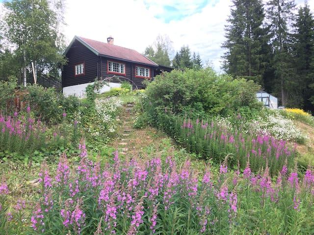 Tømmerhytte med flott utsikt - en time fra Oslo.