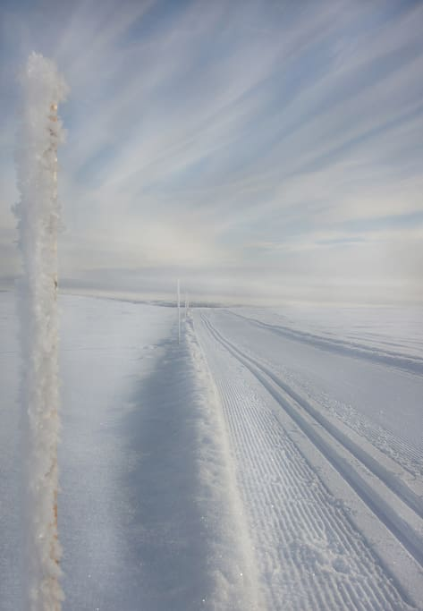 Cross-country skiing in Geilo