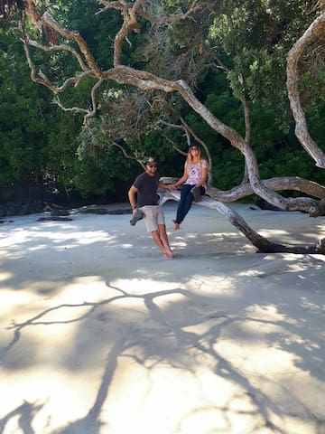 Whale Bay. Pristine and beautiful. 10 minutes gentle bush walk. Track suitable for all ages and fitness.