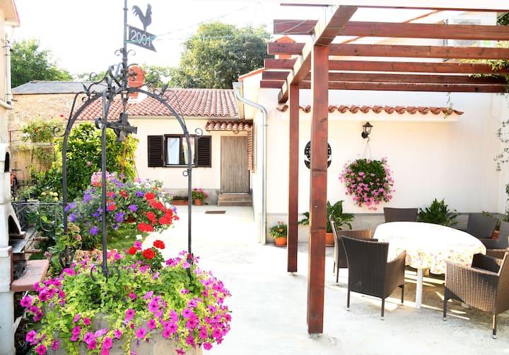 Nadia's house, Pićan (Istria)