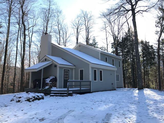 Sweet Blue Mint Ski House
