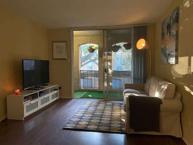 Historic One bedroom apartment Galleria Area