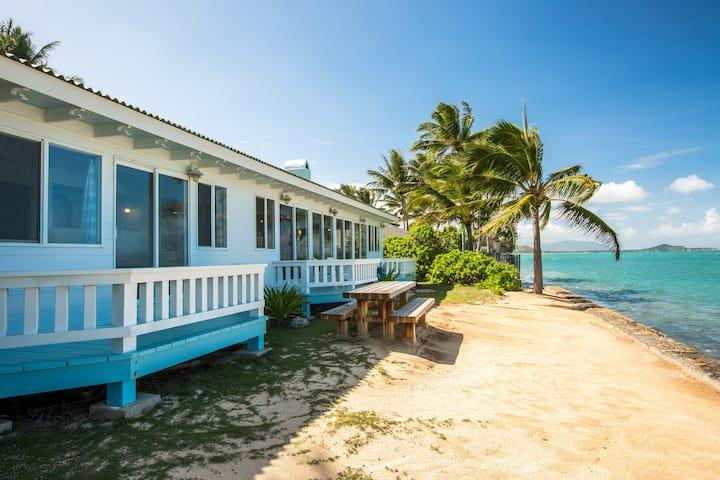 New Listing! Oceanfront Estate w/ Bonus Apartment