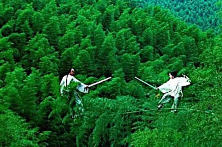 黄山木坑竹海景区  隐居·竹舍观景套房