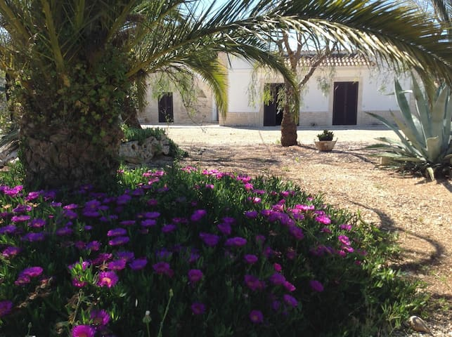 Amazing Villa Masseria for 6 guests