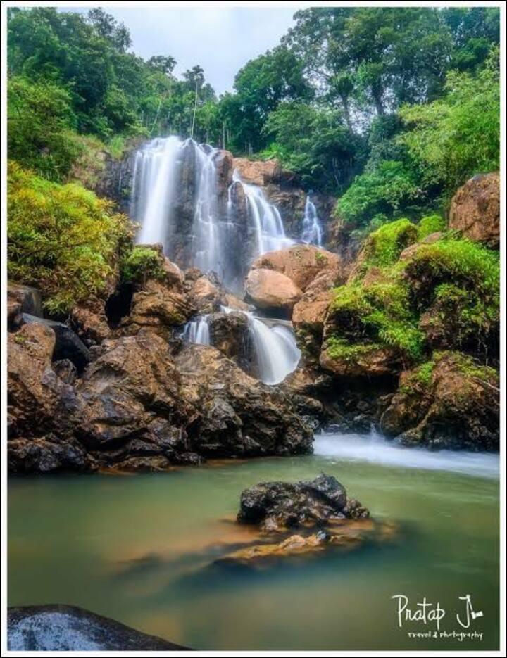Yellapur - A hidden treasure : A dense rainforest