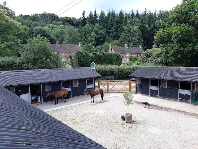 Super base for a horsey time in the Surrey Hills