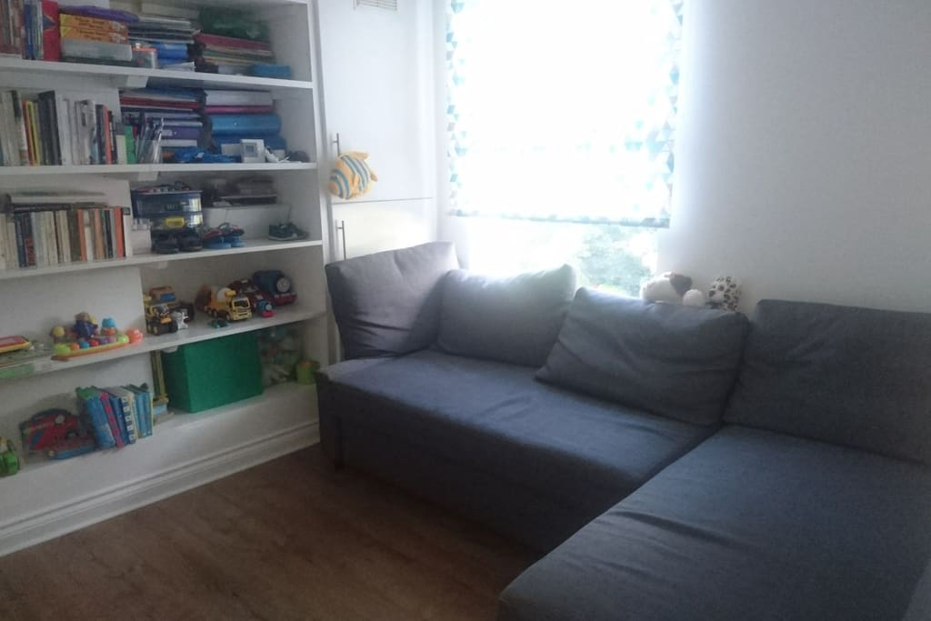 Huge sofa bed and library