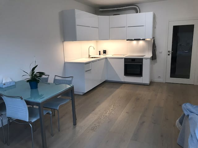Beautiful new apartement next to Vltava