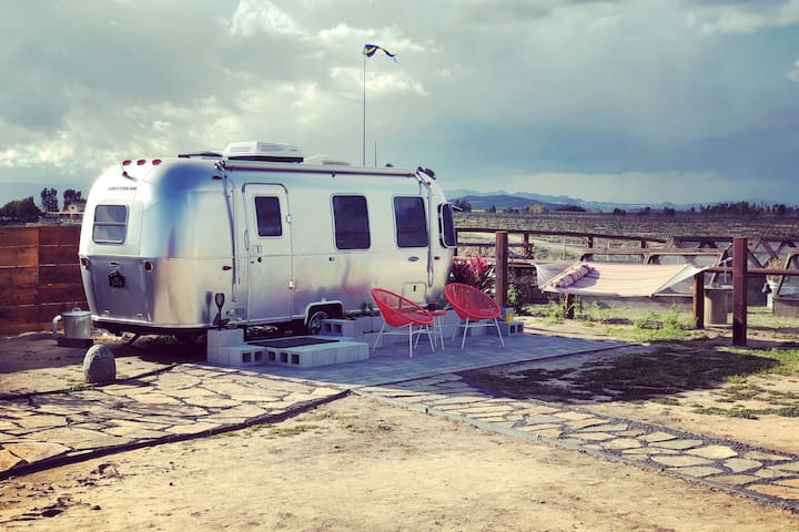 "Tiny AirStream ""Space Odyssey"" Mini Goats, Farm"