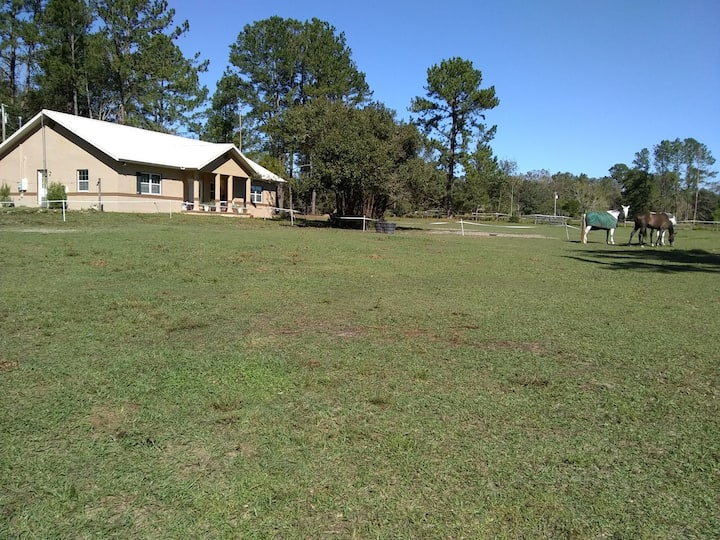 2 bedroom suite Ocala horse country home  pets ok