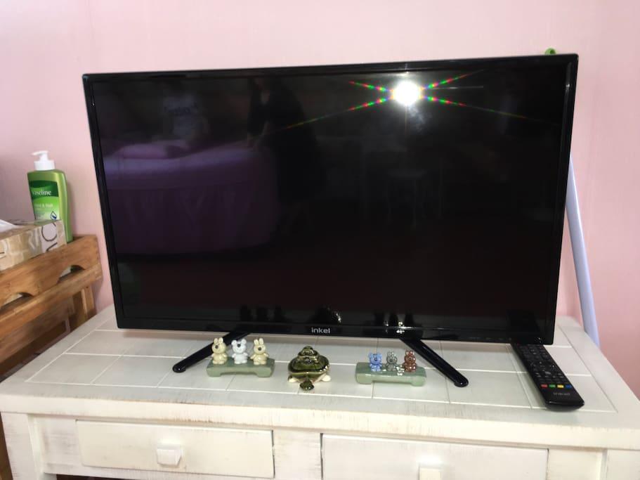 티비의 모습입니다.
