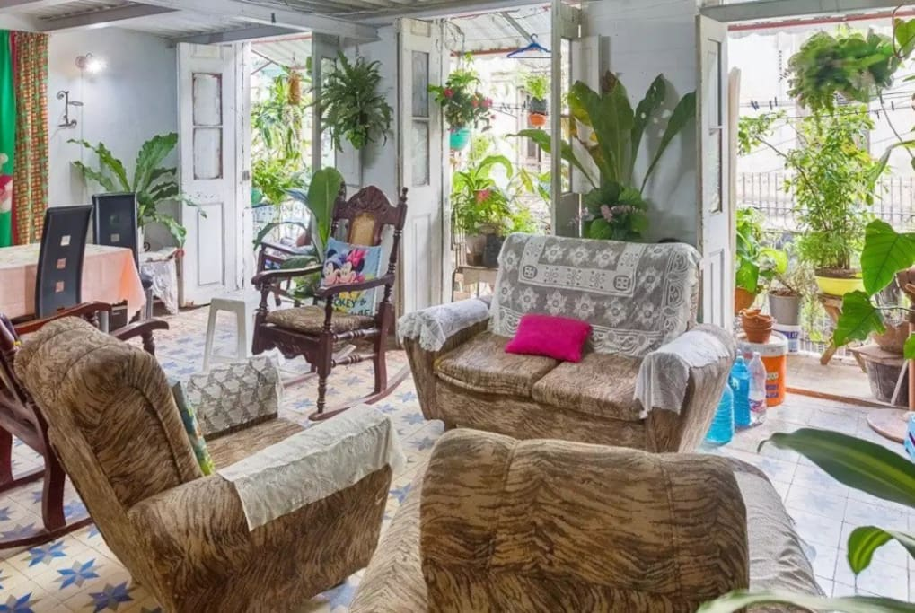 An Indoor Tropical Green Jungle Grows in a Old Havana House (love the balcony with plants on top)