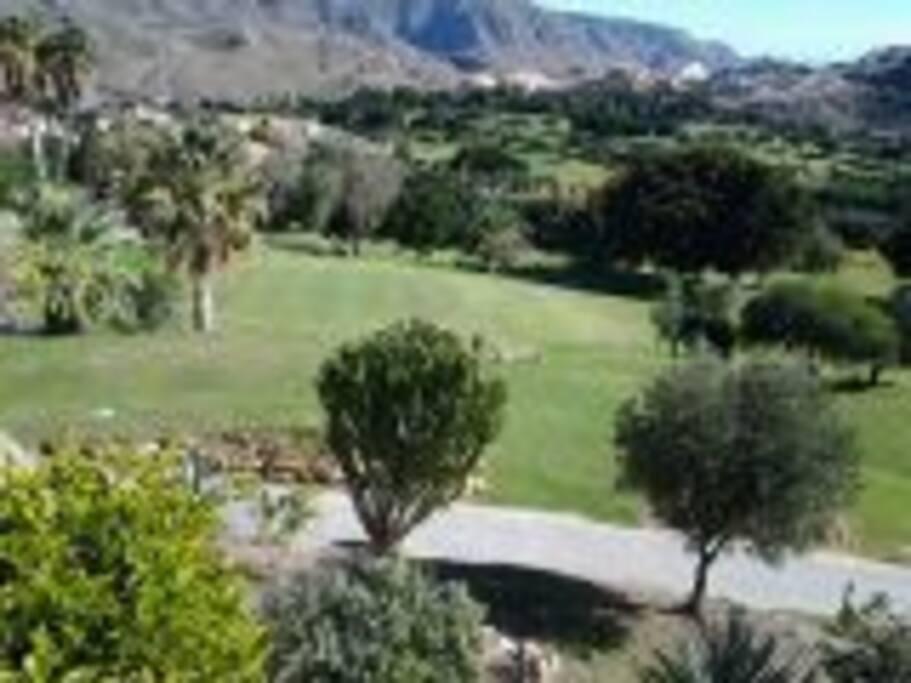 Parcours de Golf au pied de la résidence.
