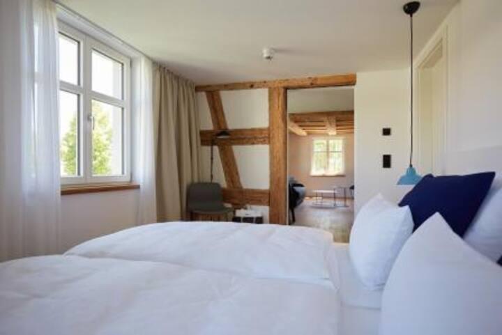 Sternen Bohlingen Aparthotel, (Singen), Apartment Aachblick, 47qm, 1 Schlafzimmer, 1 Wohn-/Schlafzimmer, max. 4 Personen