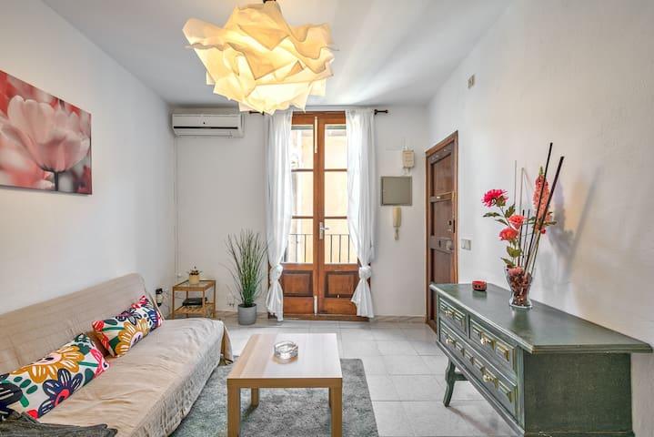 Bonito apartamento en el centro