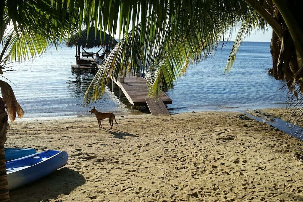 Entrance to beach after a 2 minute walk! Dock is where you catch a water taxi.