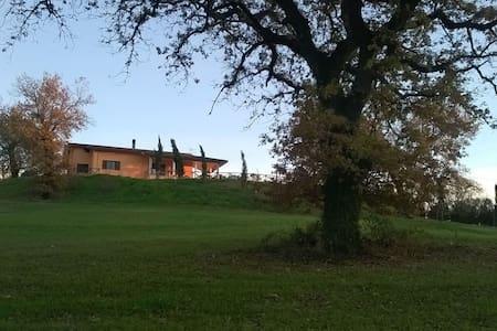 Villa  Cipressi - Saturnia