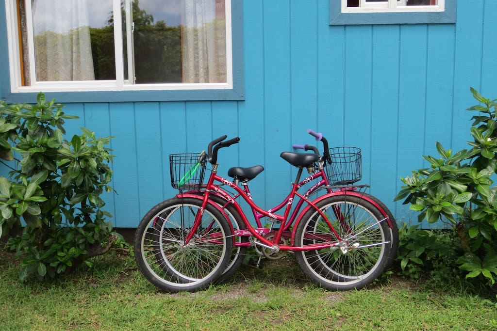 Bicycle to rent