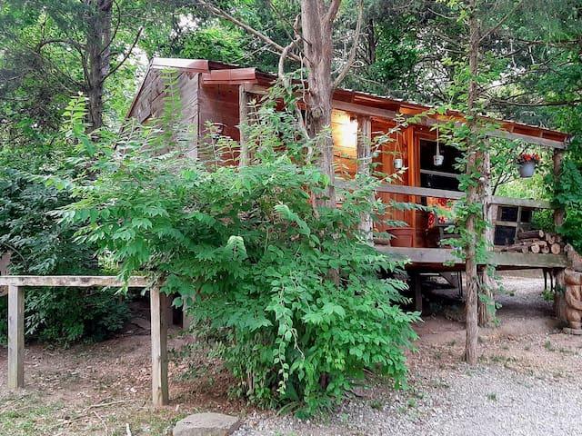 Wildvine Homestead