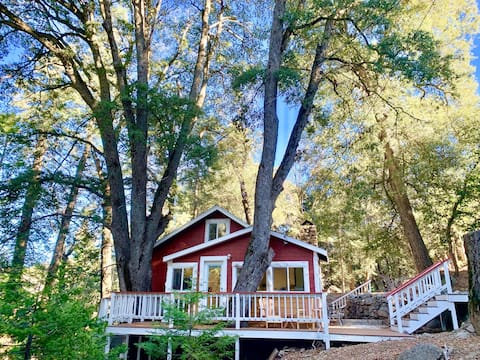 Palomar Mountain Cabin in the Trees