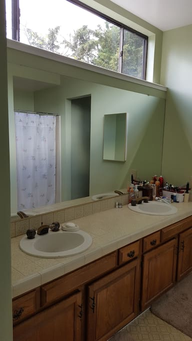 spacious bathroom with double-sink, shower and separate rub