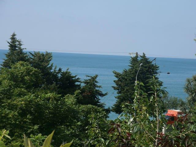 mziuri - Batumi