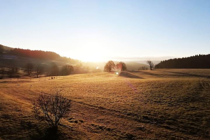 Ferienwohnung Weißer Adler Schwarzwald
