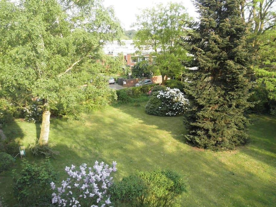 Gartenblick / garden view