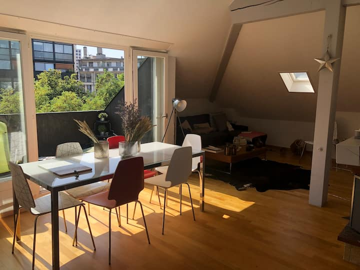 Cozy Furnished Loft in Geneva City Center
