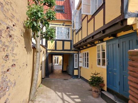Apartamento céntrico cerca del puerto y la calle peatonal