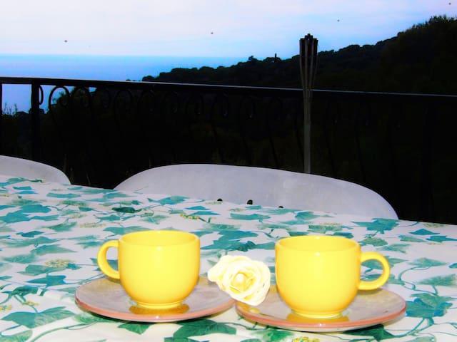 Mimosa - Quercianella - Apartament