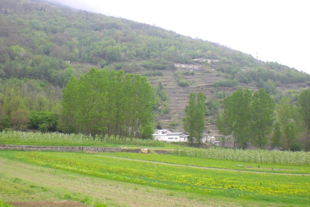 Panorama dal Borgo