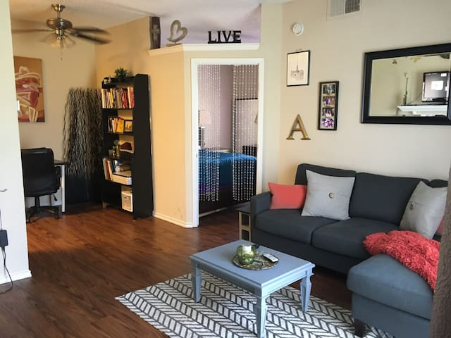 1 Bedroom close to Downtown Dallas - Dallas - Flat