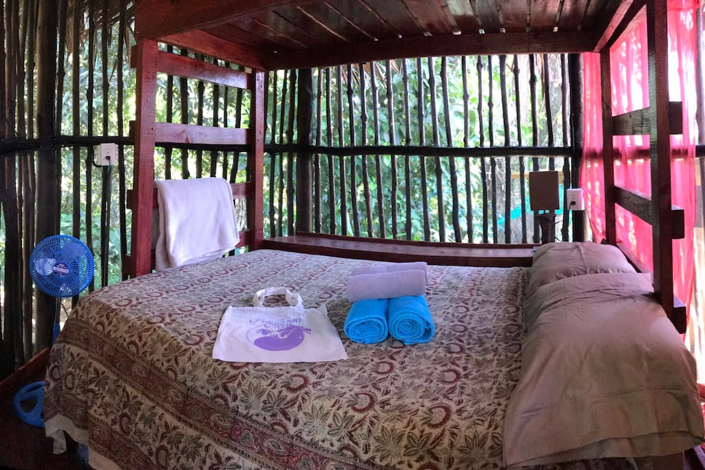 A room in the jungle completely screened in with a comfortable bed.