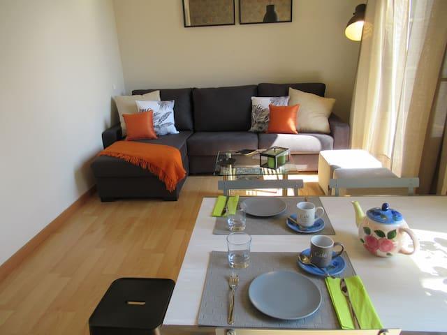 Otra vista del salón con sofá cama cheslong super cómodo y apertura italiana, Wifi alta velocidad y Smart TV con Netflix incluidos
