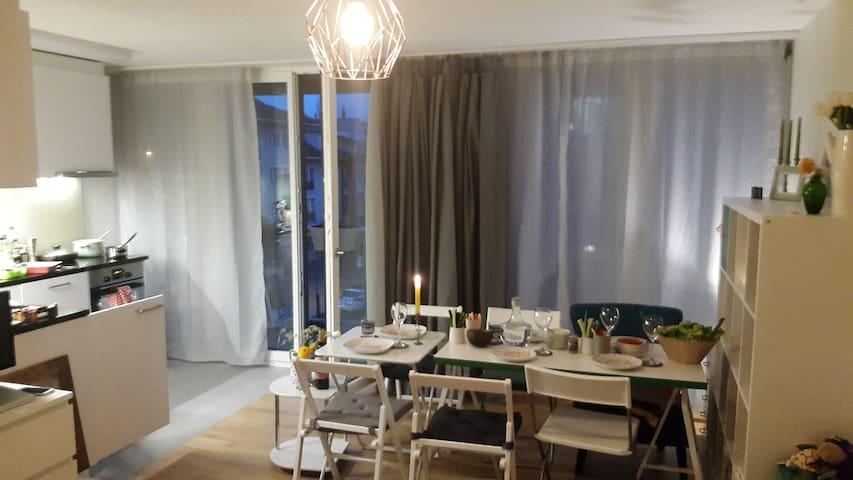 Bright Apartment +balcony (7min >> Baselworld) - Basel - Wohnung