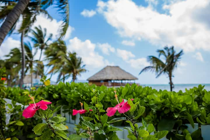 Casa En La Playa  Luxury villa
