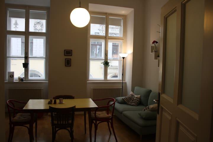 Wohnung 42 mq- Naschmarkt - Vienna - Apartmen