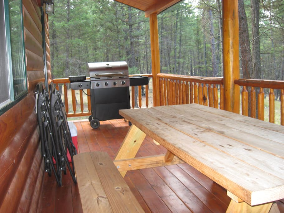 Enjoy the back porch with picnic table, stainless steel gas grill, two anti-gravity lounge chairs and two coolers for your day excursions.