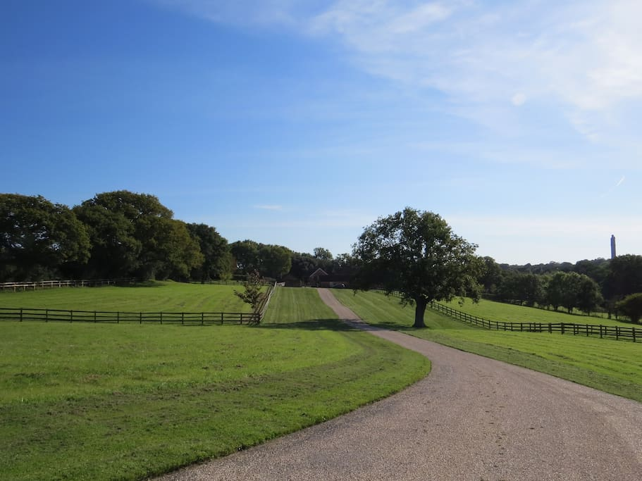 As the gate opens, the drive to Kings Farm and the Barn