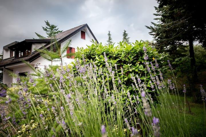 """""""Le Conifere"""" -Mini appartamento vista giardino-"""