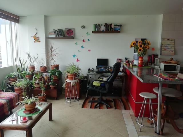 Apartaestudio Centro Bogotá
