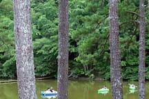 Kayaking and Paddle boating on Lake Dreamscapes