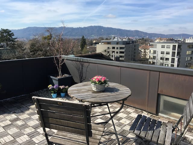 Bright City Centre Apartment with Cute Terrace - Zürich - Lejlighed