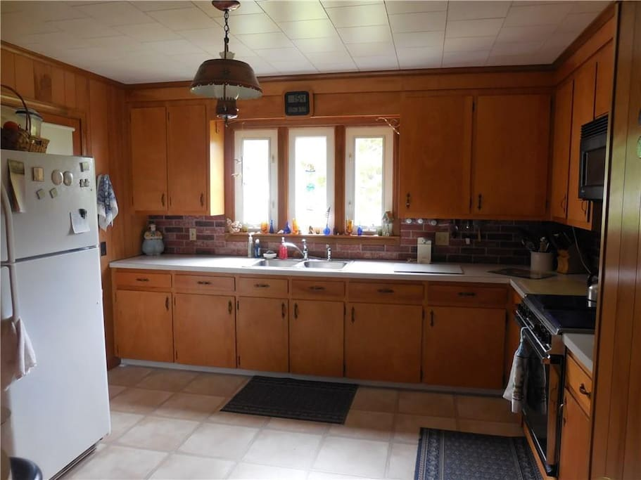 A large kitchen with gas stove and view of ferns