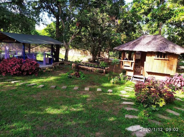 This guest house is made of bamboo, natural breeze, no need to use air condition all year long. You are surrounded by trees, you can hear birds singing. You can drink tea in your own little chamber. There is one queen bed, ideal for one couple.